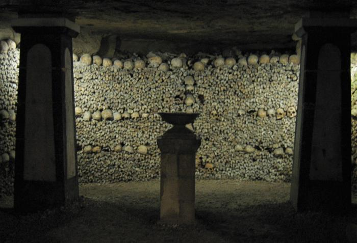 Skeletons of Paris Photo by Wikimedia Commons
