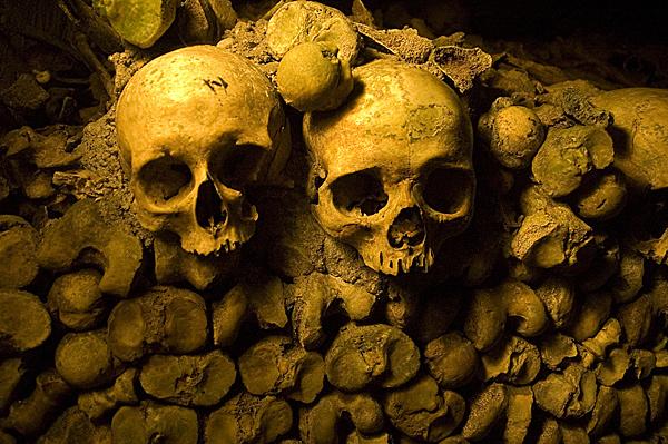 Skeletons of Paris Photo by Sorcerersskull.blogspot